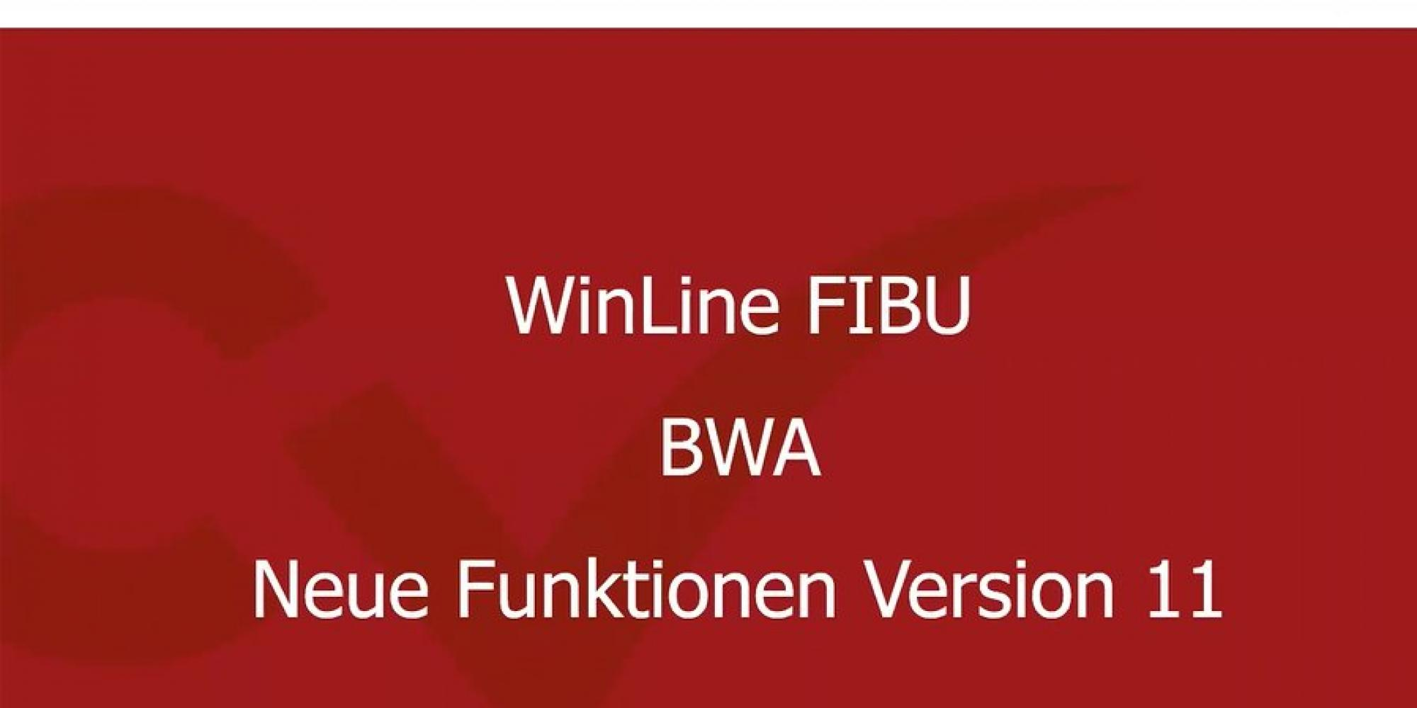 Video WinLine 11.0 - BWA-Stamm