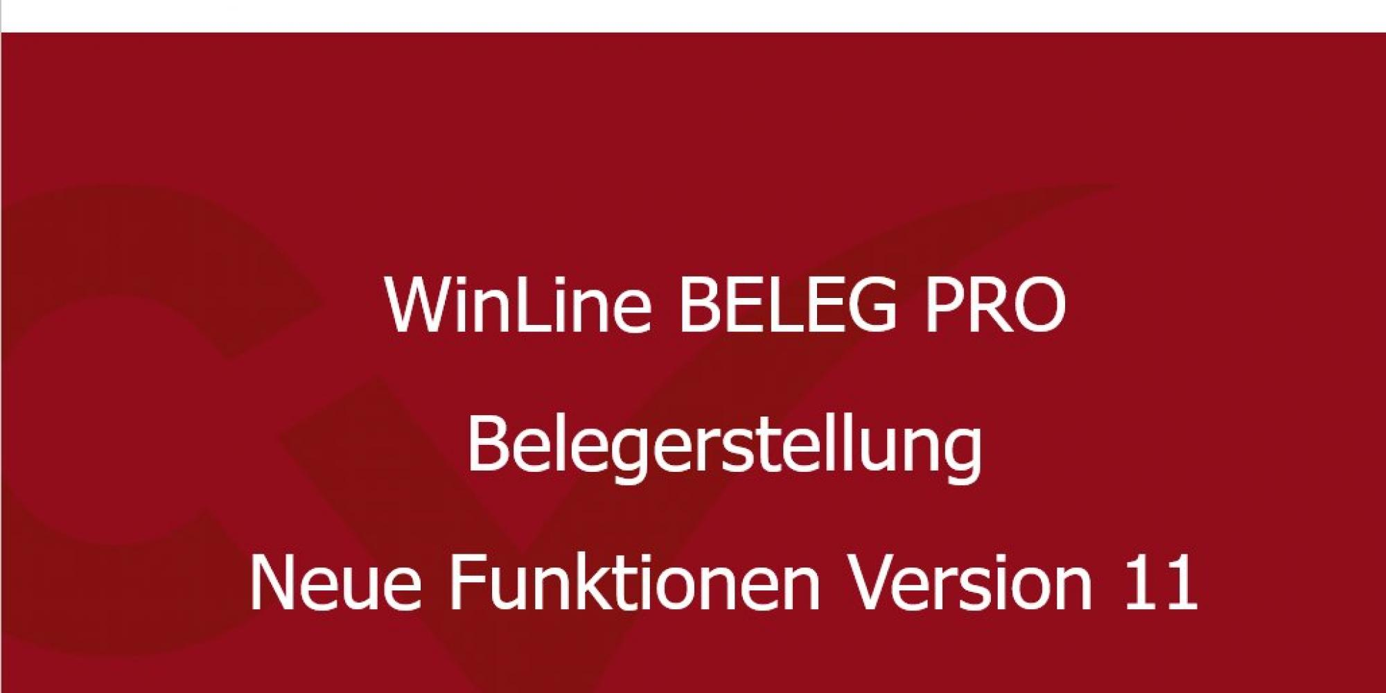 Video WinLine 11.0 - BELEG PRO: Belegerstellung